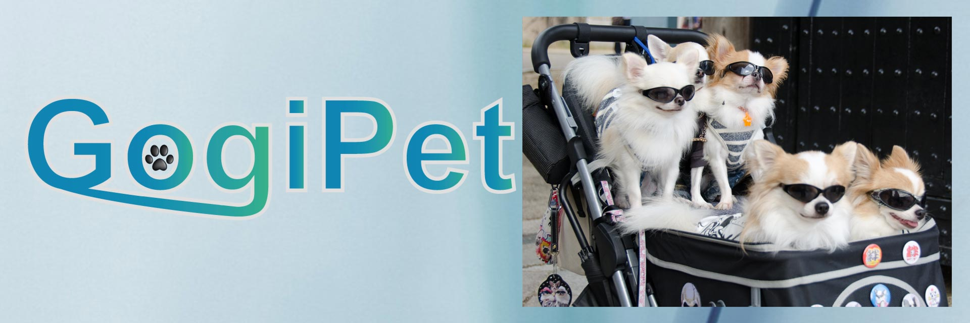 Prams for dogs